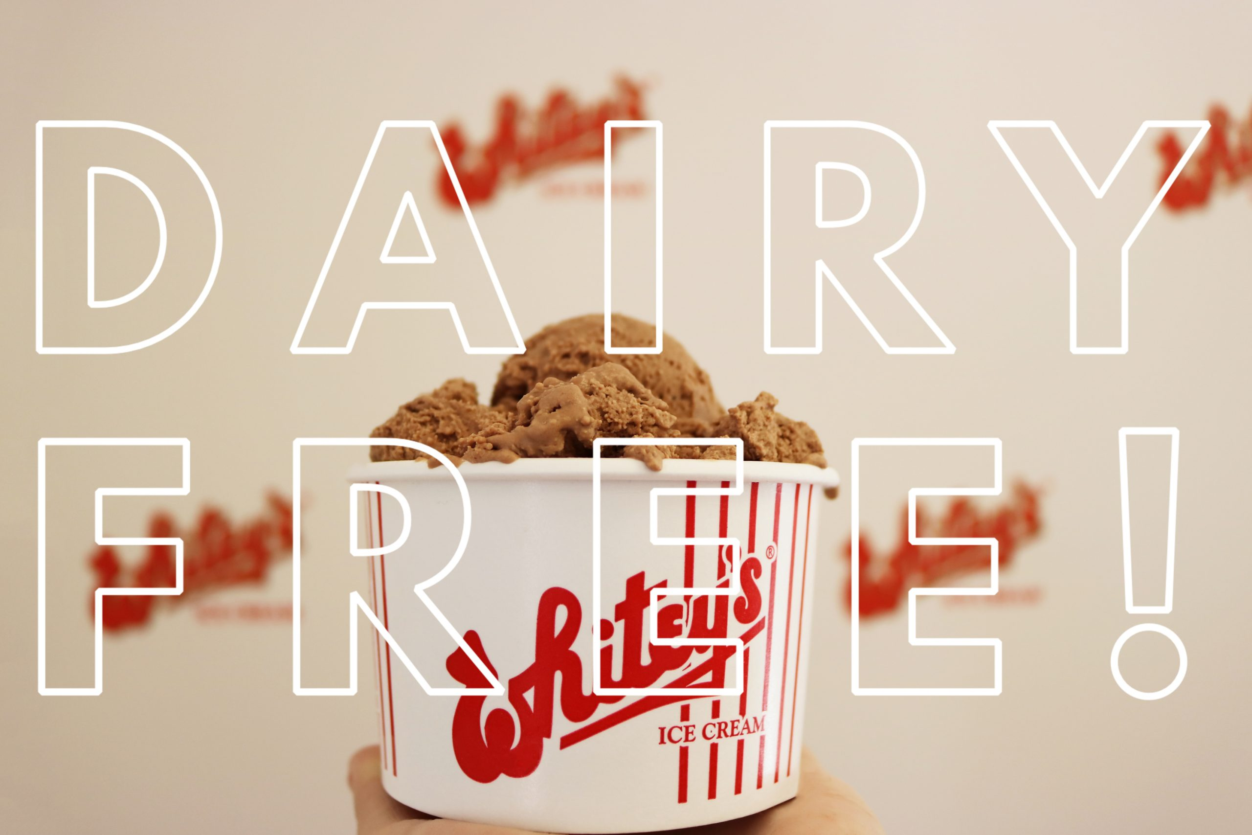 dairy free 1